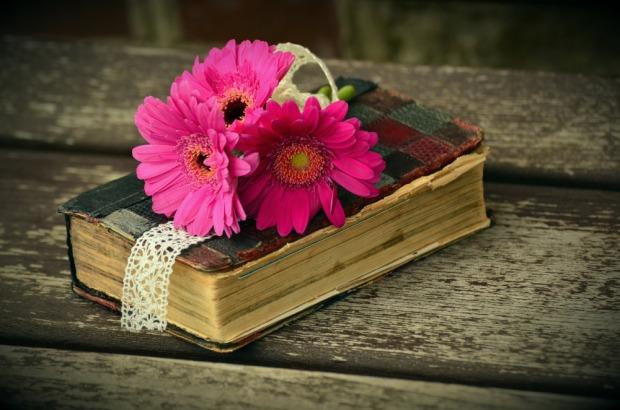 libri-rosa